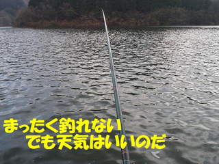 P1182820
