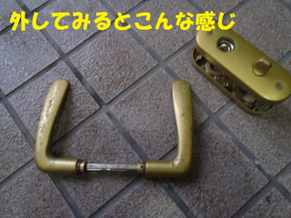 P5161601
