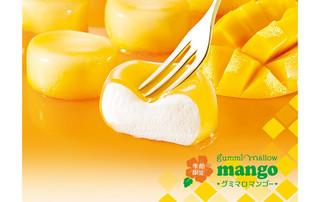 Top_img_mango2015