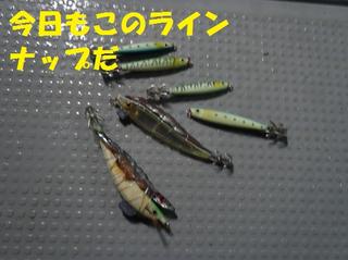P4220007