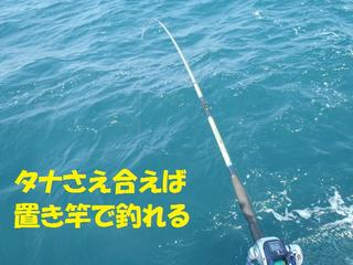 Sp5140060