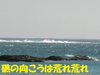 s-CIMG0910.jpg