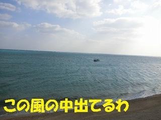 s-CIMG0911.jpg