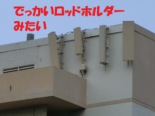 s-CIMG1446.jpg