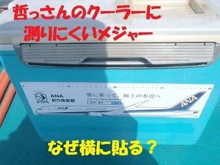 s-P2240370.jpg