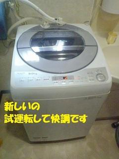 s-P3110401.jpg