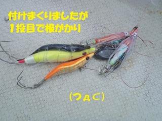 s-P6090583.jpg