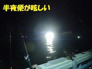 s-P7070746.jpg
