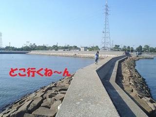 s-P7140636.jpg