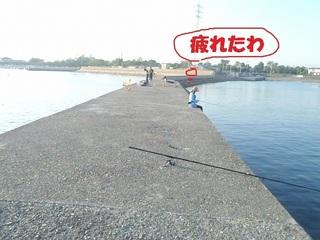 s-P7140639.jpg