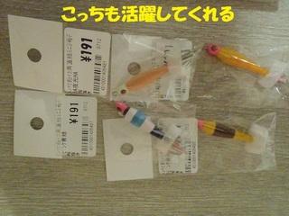 s-P7290666.jpg