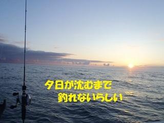 s-P8100677.jpg