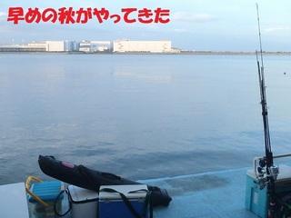s-P8170691.jpg