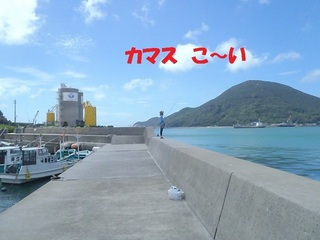 s-P8250713.jpg