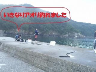 s-P9010719.jpg