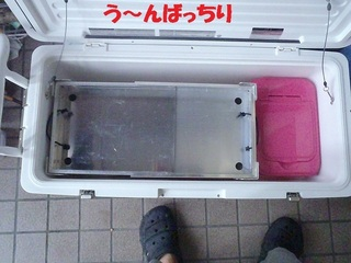 s-P9040732.jpg