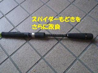 s-P9040736.jpg