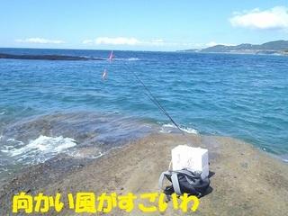s-P9080852.jpg
