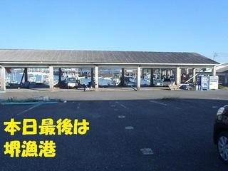 s-P9080859.jpg