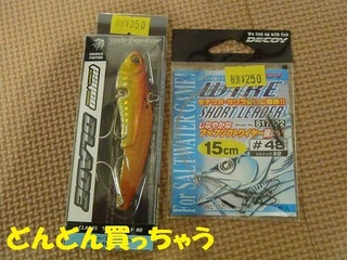 s-PA150032.jpg