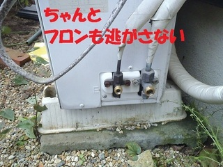 s-PA230051.jpg