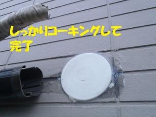 s-PA230055.jpg