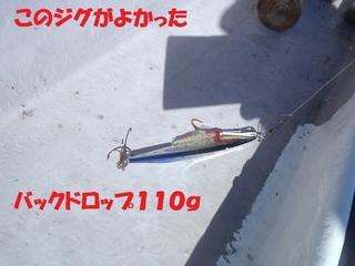 s-PB030780.jpg