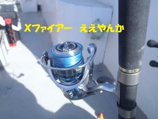 s-PB030781.jpg