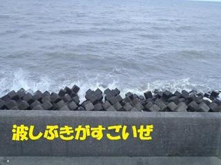 s-PB110084.jpg