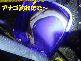 s-PC150198.jpg