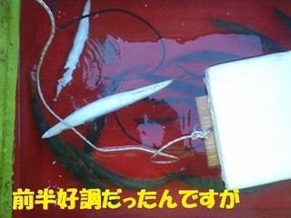 s-PC230229.jpg