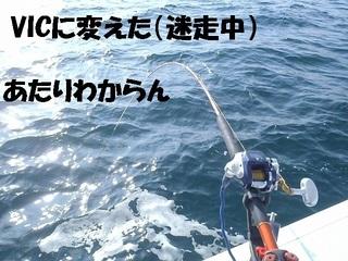 s-PC290255.jpg