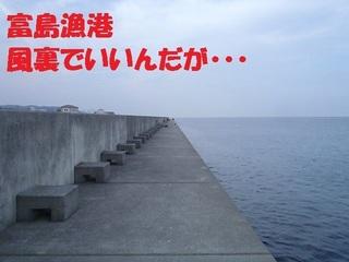 s-PC310260.jpg