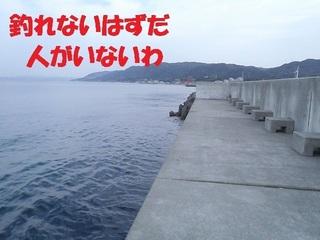 s-PC310261.jpg